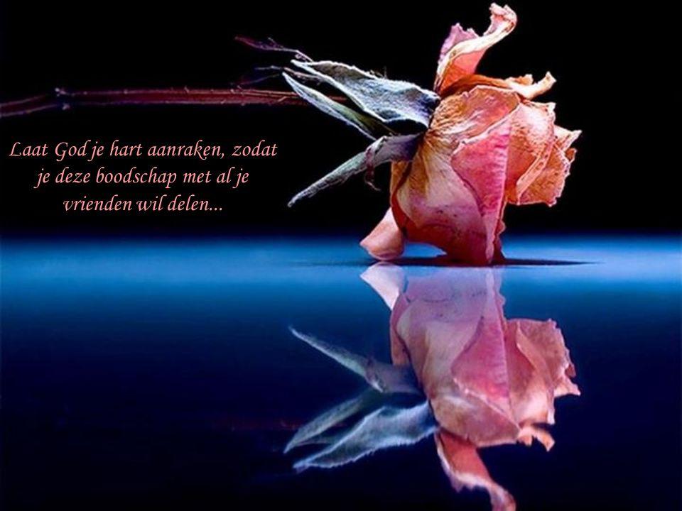 Laat God je hart aanraken, zodat je deze boodschap met al je vrienden wil delen...
