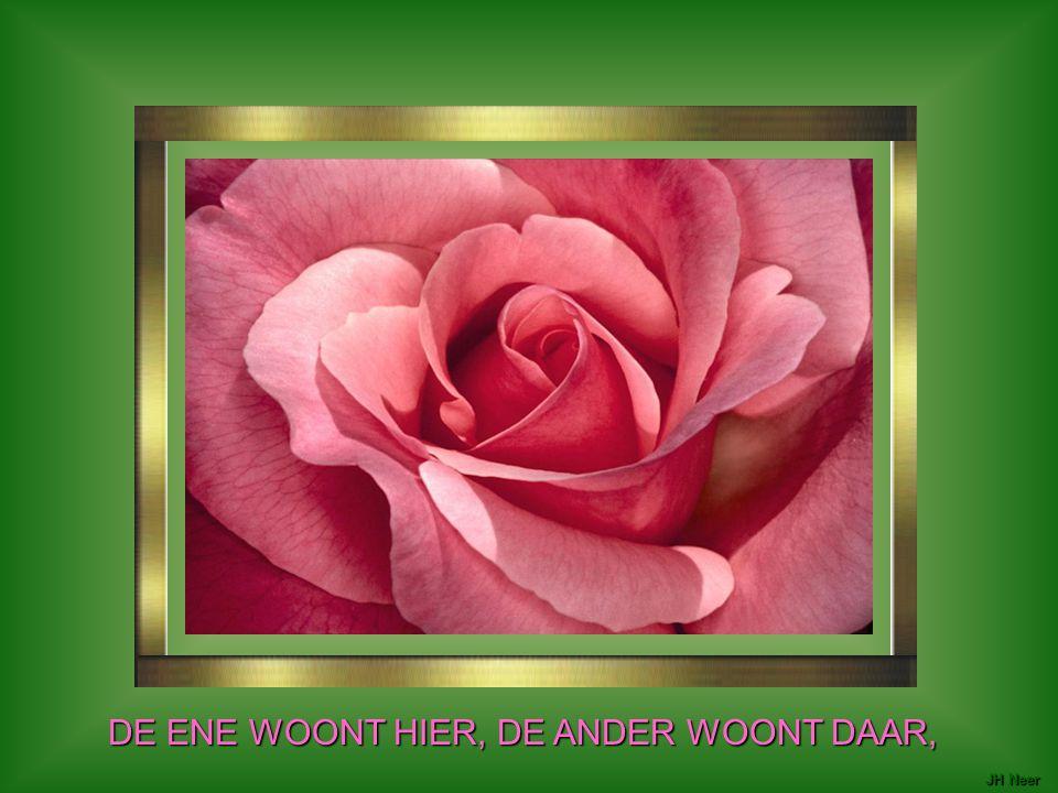 DE ENE WOONT HIER, DE ANDER WOONT DAAR,