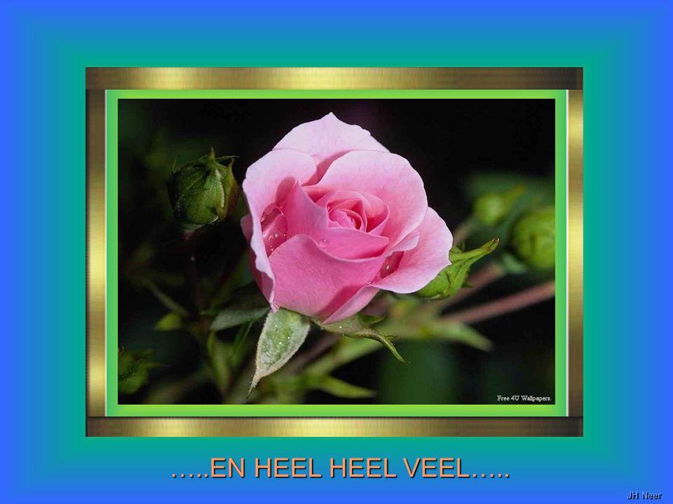 …..EN HEEL HEEL VEEL….. JH Neer