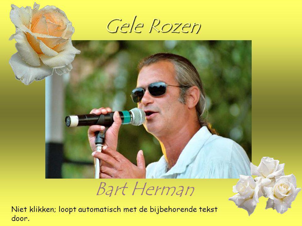 Gele Rozen Bart Herman Niet klikken; loopt automatisch met de bijbehorende tekst door.