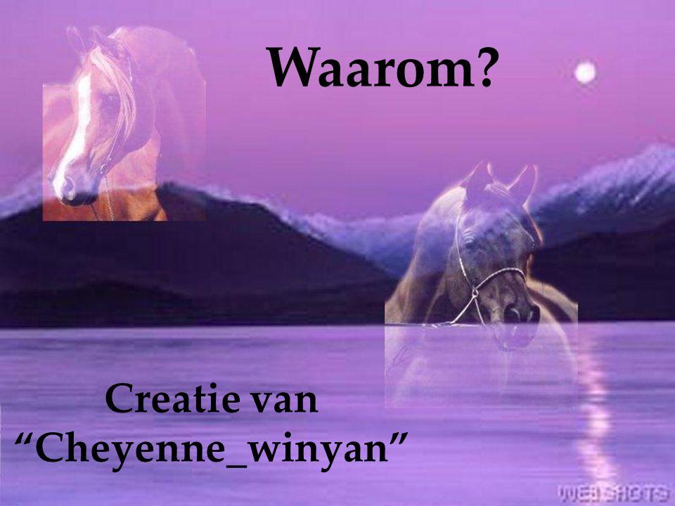 Creatie van Cheyenne_winyan