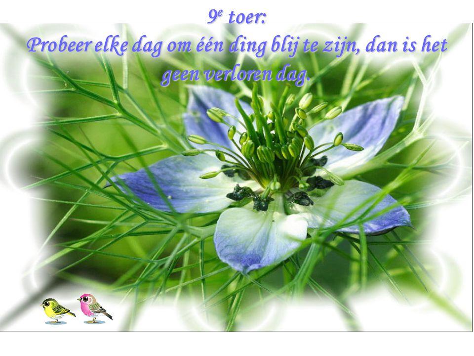 9e toer: Probeer elke dag om één ding blij te zijn, dan is het geen verloren dag.