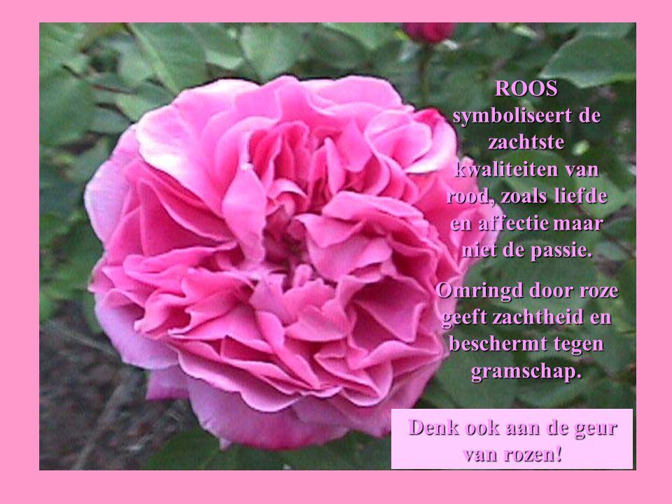 Omringd door roze geeft zachtheid en beschermt tegen gramschap.