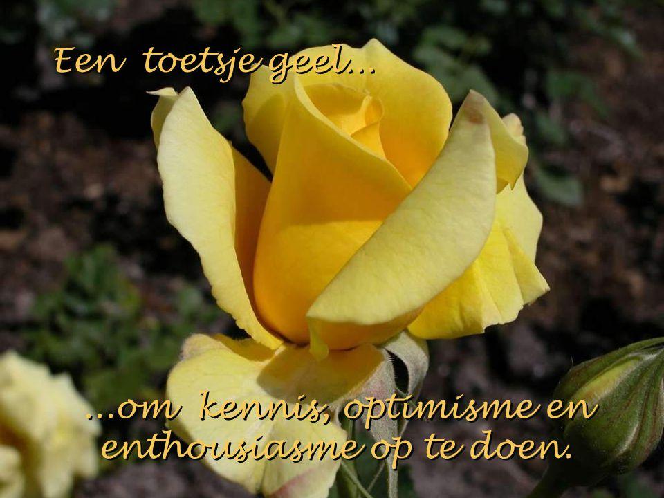 ...om kennis, optimisme en enthousiasme op te doen.