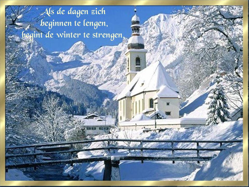 Als de dagen zich beginnen te lengen, begint de winter te strengen.