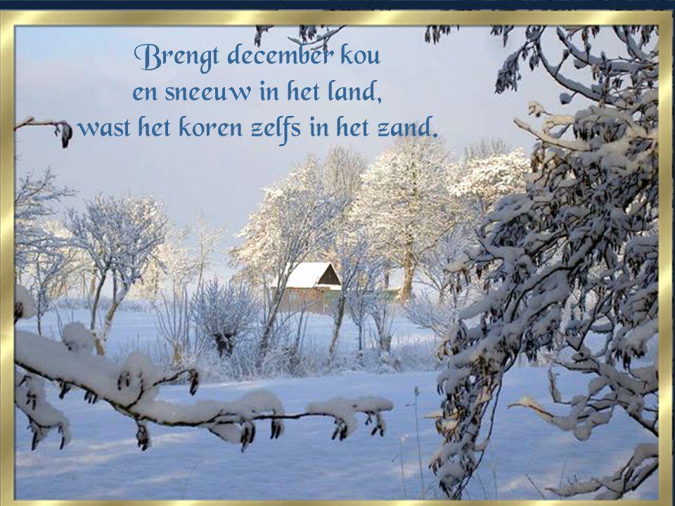 Brengt december kou en sneeuw in het land, wast het koren zelfs in het zand.