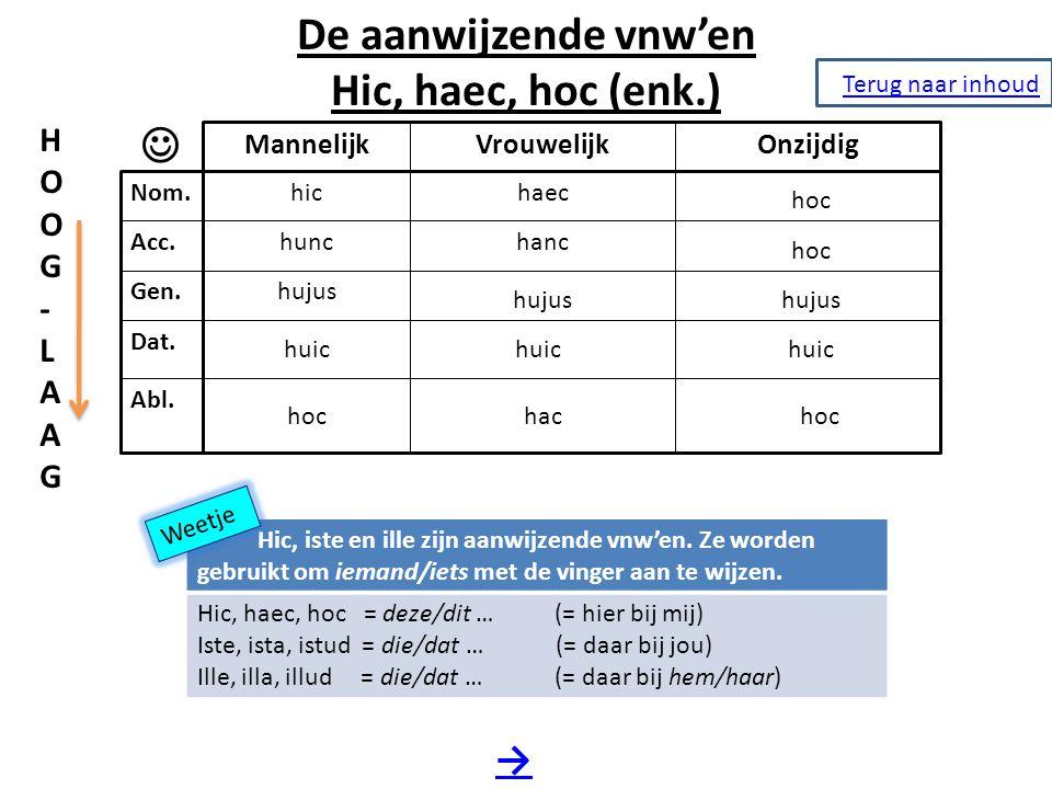 De aanwijzende vnw'en Hic, haec, hoc (enk.) 