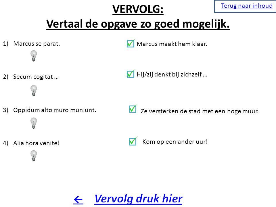 Vertaal de opgave zo goed mogelijk.