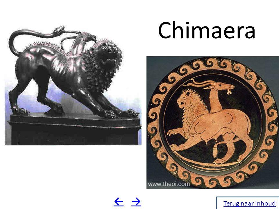 Chimaera ← → Terug naar inhoud Terug naar inhoud