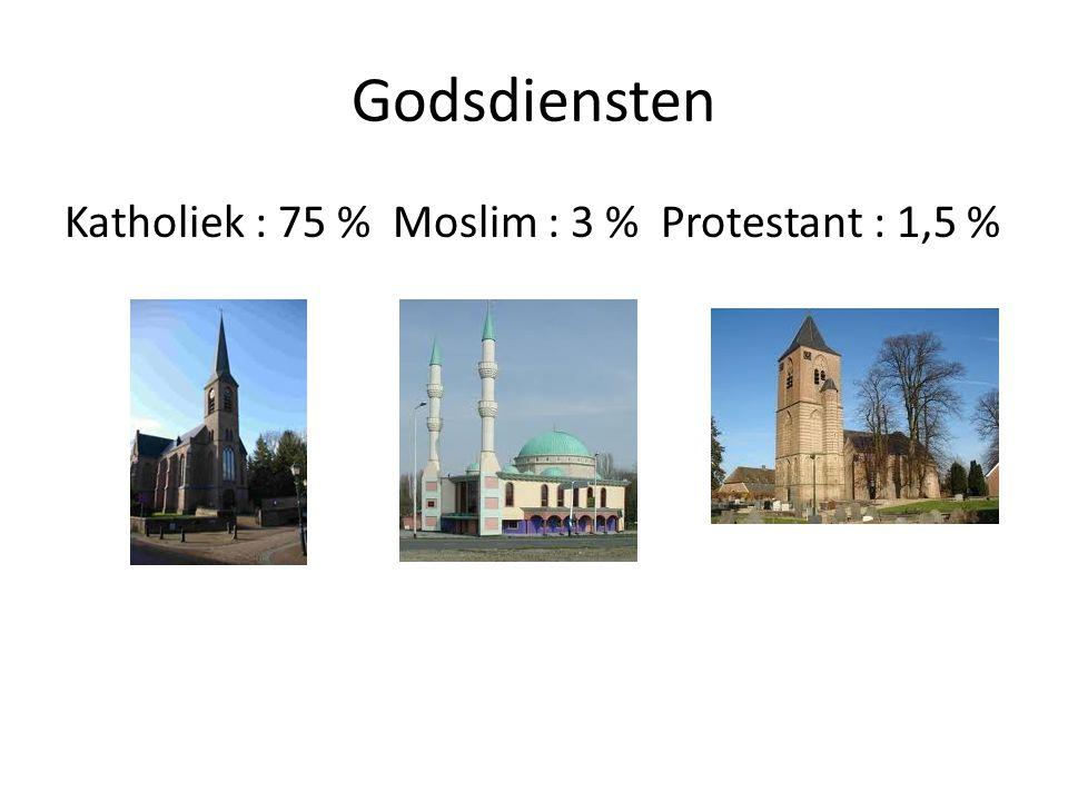 Godsdiensten Katholiek : 75 % Moslim : 3 % Protestant : 1,5 %