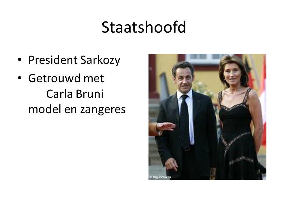 Staatshoofd President Sarkozy