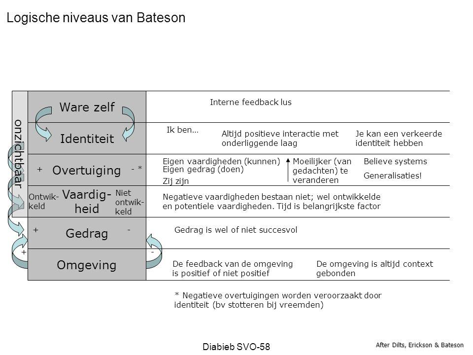 Logische niveaus van Bateson