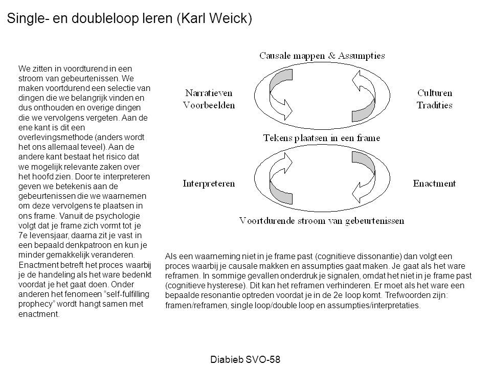 Single- en doubleloop leren (Karl Weick)