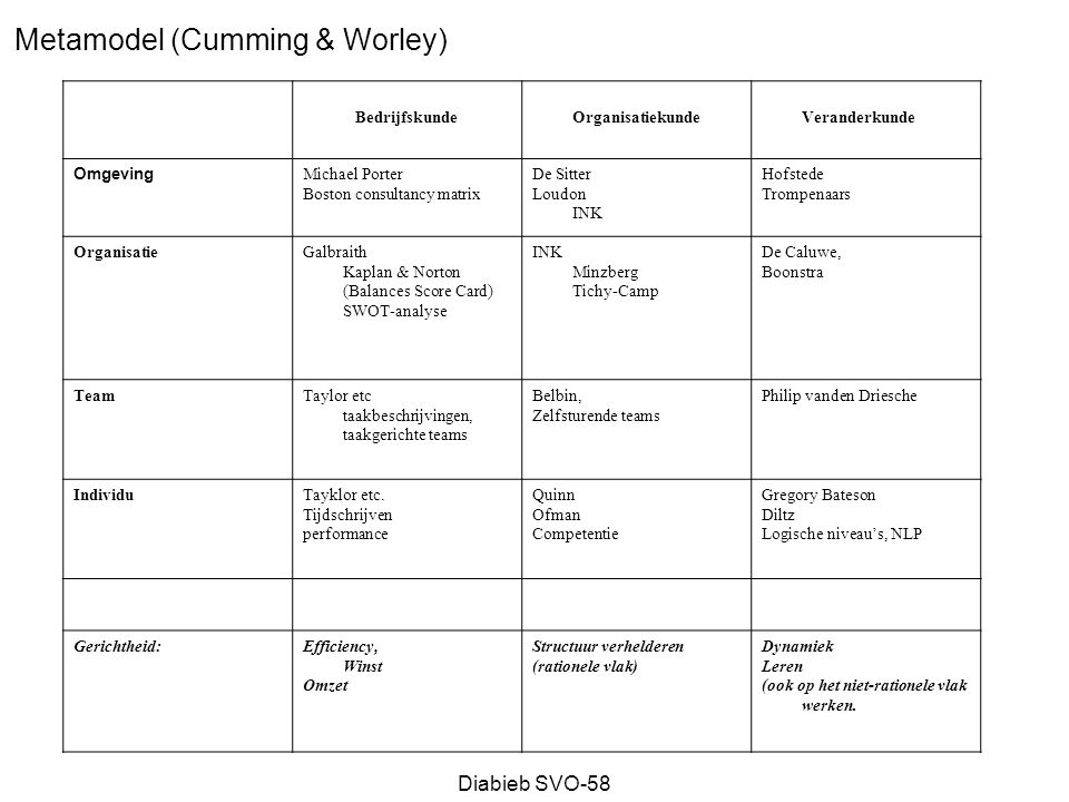 Metamodel (Cumming & Worley)