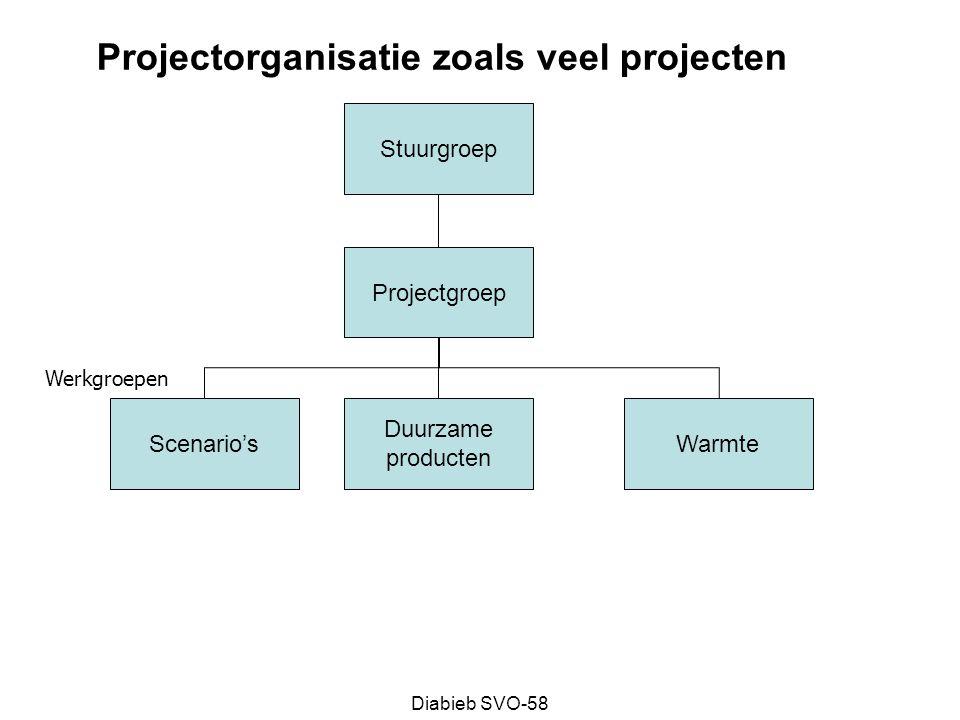 Projectorganisatie zoals veel projecten
