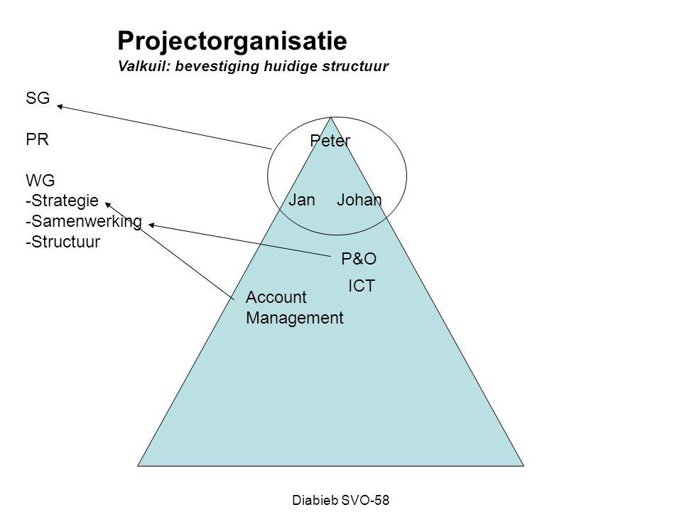 Projectorganisatie SG PR WG Strategie Samenwerking Structuur Peter Jan