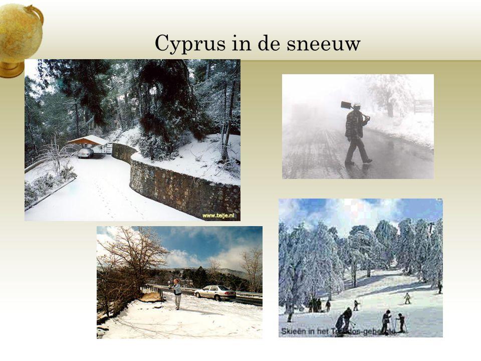 Cyprus in de sneeuw Voeg een afbeeldling in waarin een seizoen in je land te zien is.