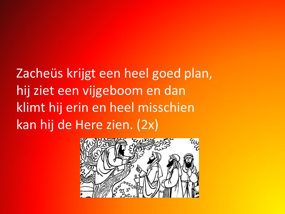 Zacheüs krijgt een heel goed plan, hij ziet een vijgeboom en dan klimt hij erin en heel misschien kan hij de Here zien.