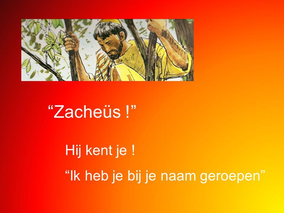 Zacheüs ! Hij kent je ! Ik heb je bij je naam geroepen