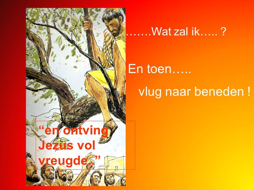 en ontving Jezus vol vreugde..