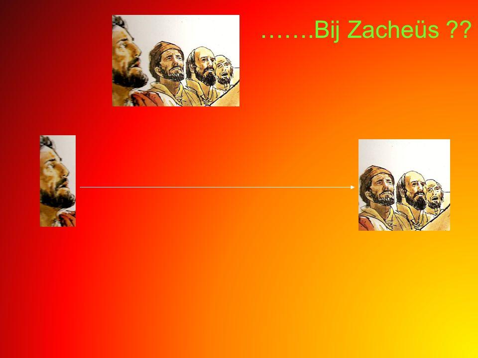 …….Bij Zacheüs