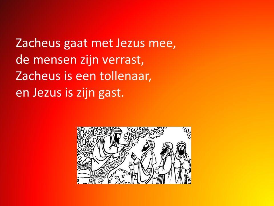 Zacheus gaat met Jezus mee, de mensen zijn verrast, Zacheus is een tollenaar, en Jezus is zijn gast.