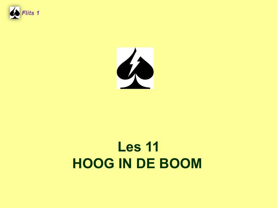 Flits 1 Spel 2. Les 11 HOOG IN DE BOOM