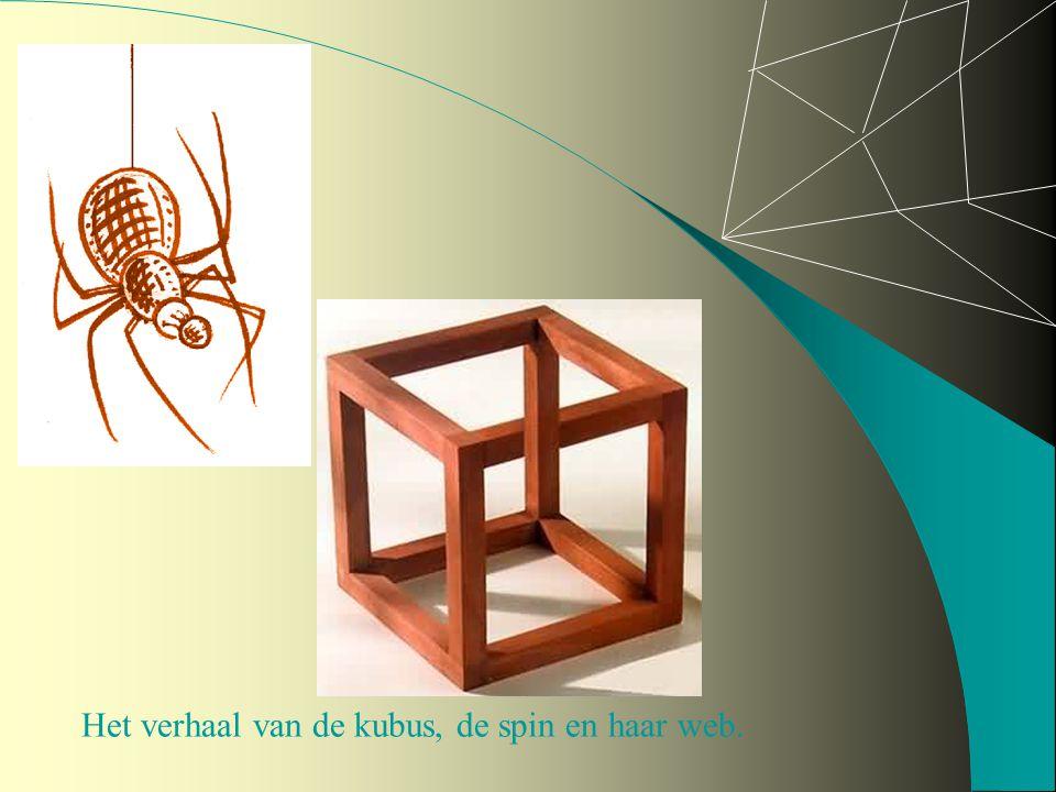 Het verhaal van de kubus, de spin en haar web.