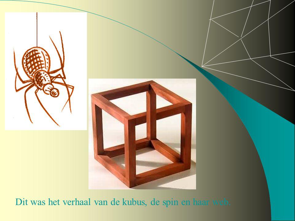 Dit was het verhaal van de kubus, de spin en haar web.