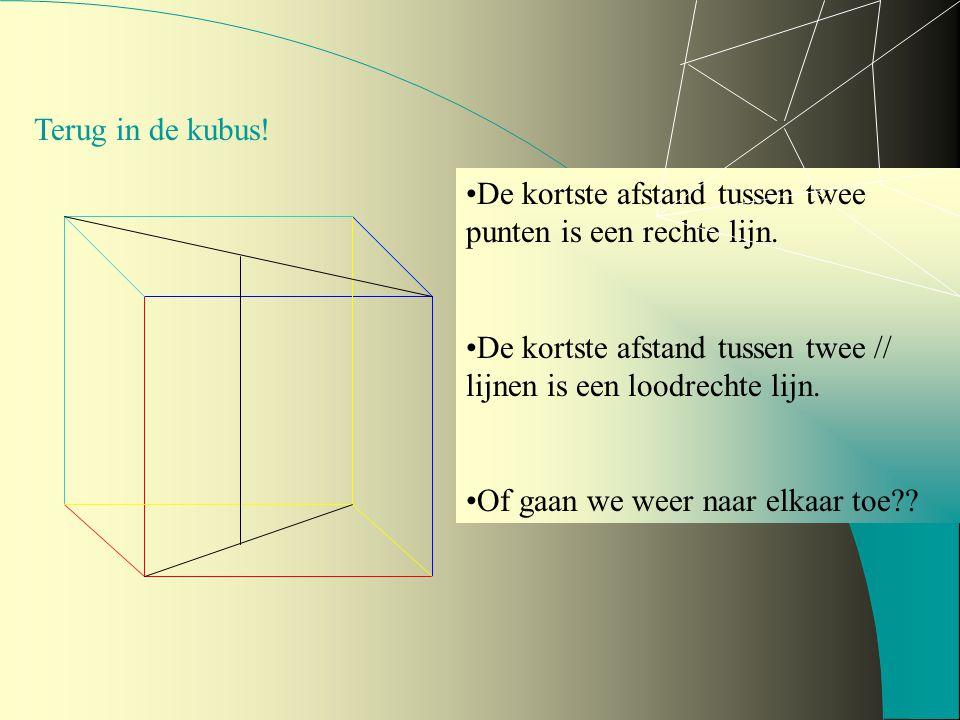 Terug in de kubus! De kortste afstand tussen twee punten is een rechte lijn. De kortste afstand tussen twee // lijnen is een loodrechte lijn.