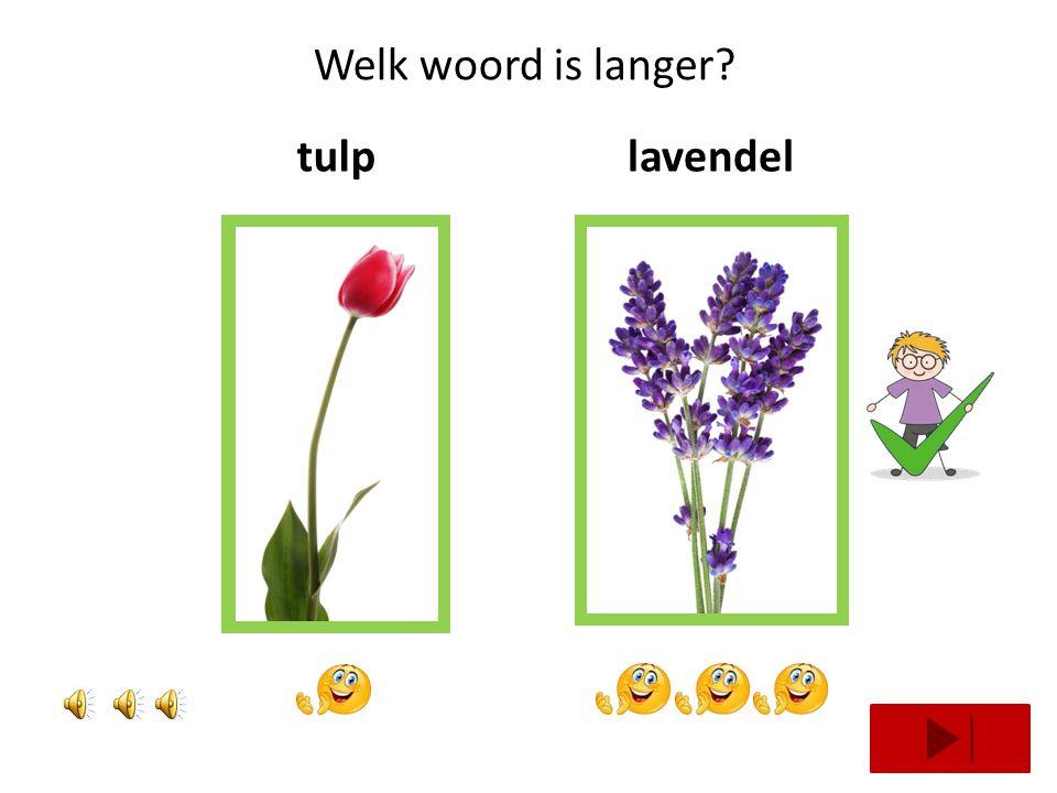 Welk woord is langer tulp lavendel