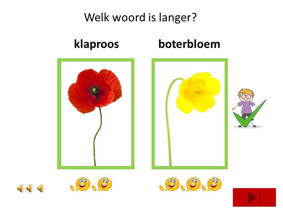 Welk woord is langer klaproos boterbloem