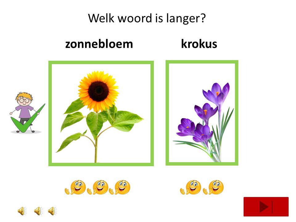 Welk woord is langer zonnebloem krokus
