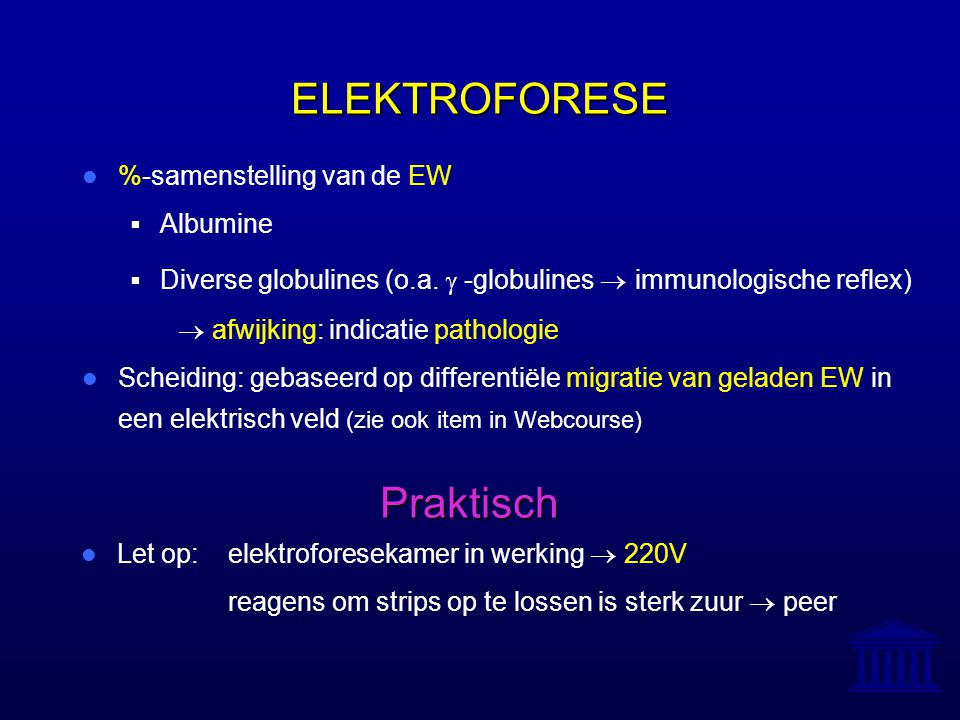 ELEKTROFORESE Praktisch %-samenstelling van de EW Albumine
