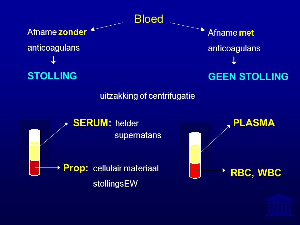 Bloed STOLLING GEEN STOLLING Prop: cellulair materiaal SERUM: helder