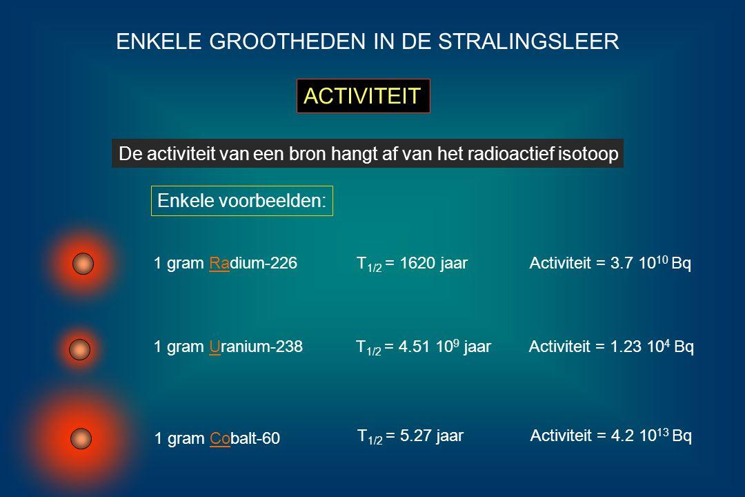 ENKELE GROOTHEDEN IN DE STRALINGSLEER