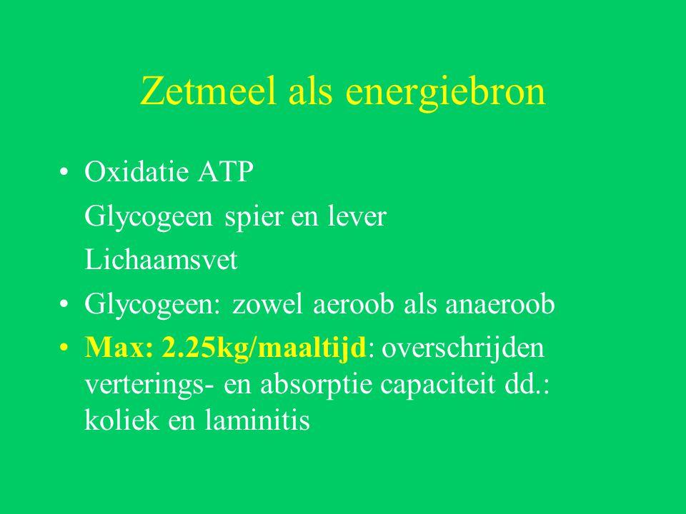 Zetmeel als energiebron