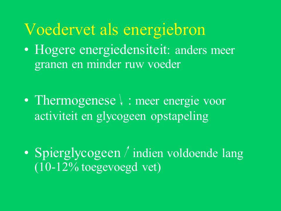 Voedervet als energiebron