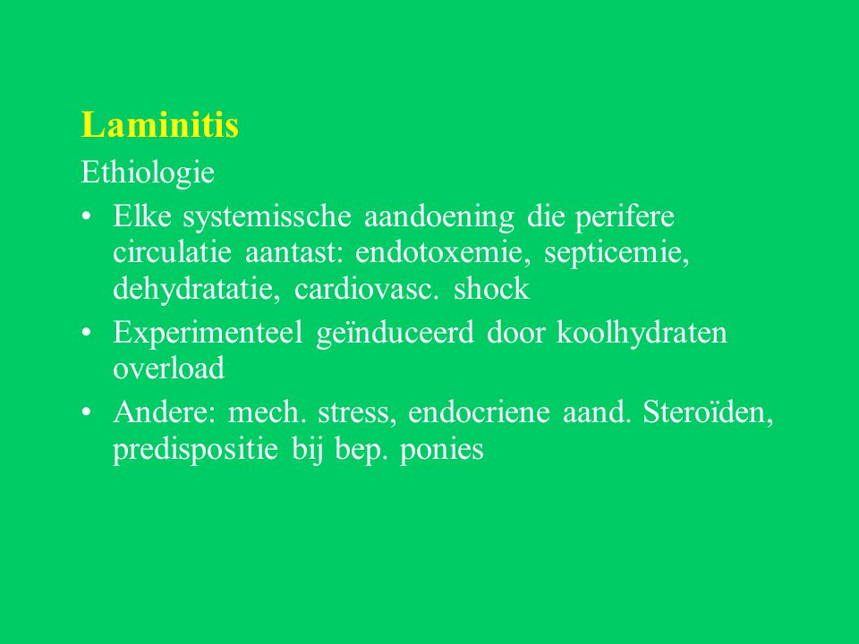Laminitis Ethiologie. Elke systemissche aandoening die perifere circulatie aantast: endotoxemie, septicemie, dehydratatie, cardiovasc. shock.