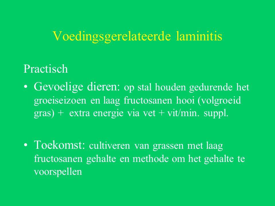 Voedingsgerelateerde laminitis