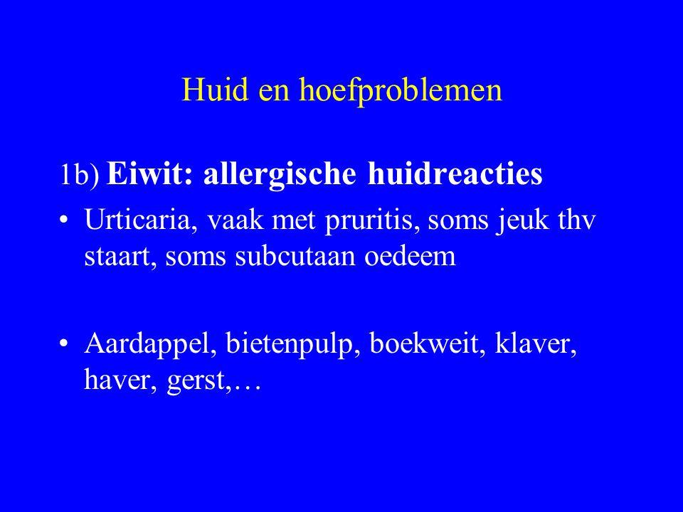 Huid en hoefproblemen 1b) Eiwit: allergische huidreacties