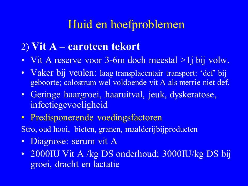 Huid en hoefproblemen 2) Vit A – caroteen tekort