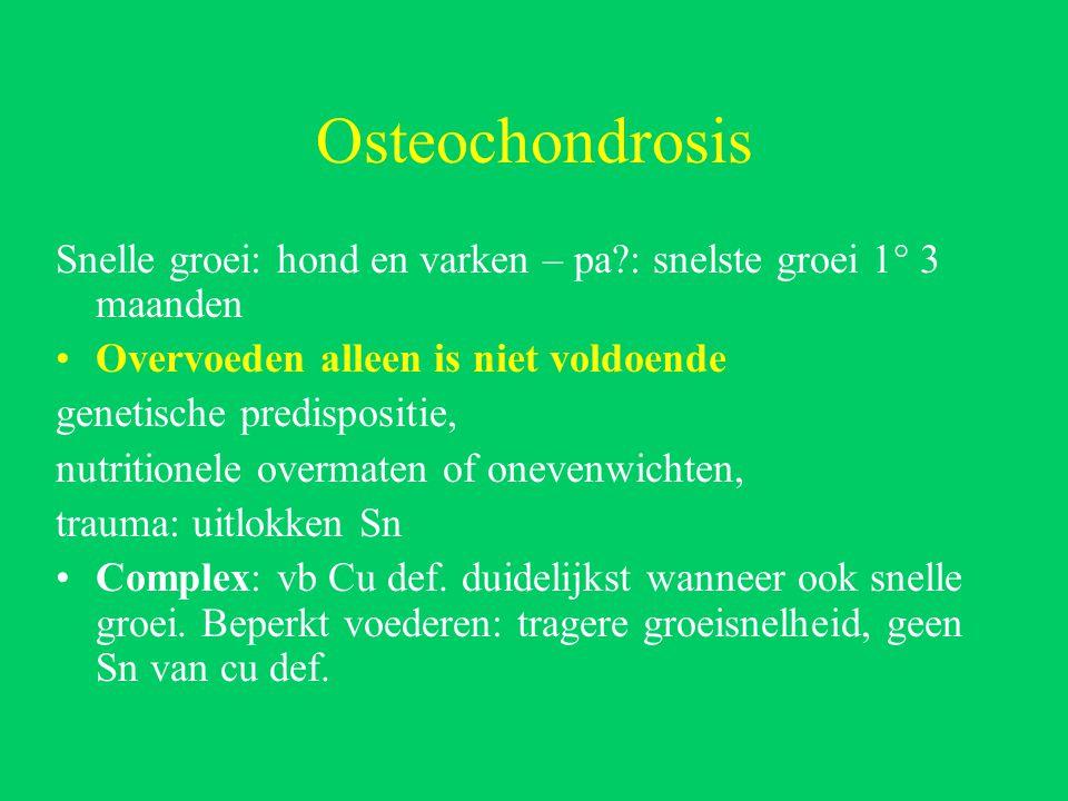 Osteochondrosis Snelle groei: hond en varken – pa : snelste groei 1° 3 maanden. Overvoeden alleen is niet voldoende.