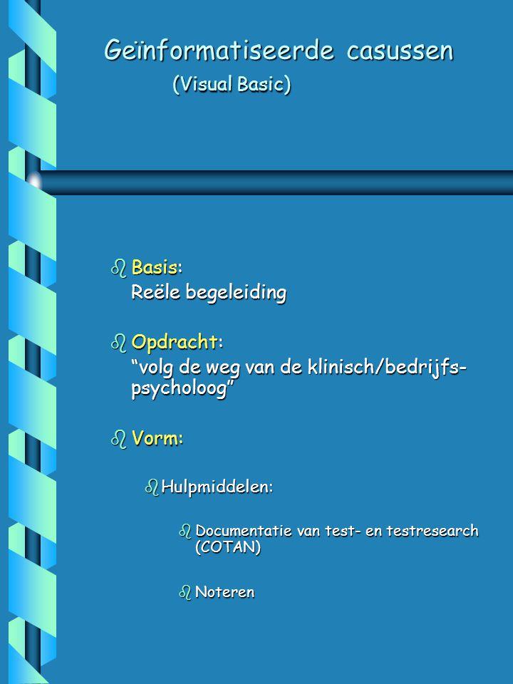 Geïnformatiseerde casussen (Visual Basic)