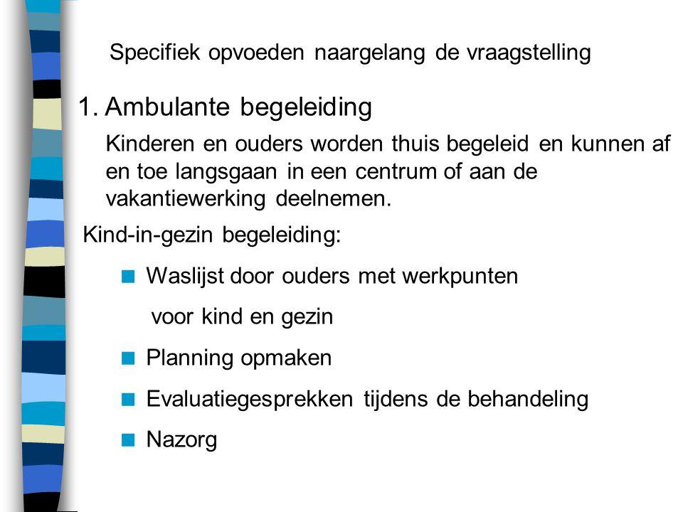 1. Ambulante begeleiding