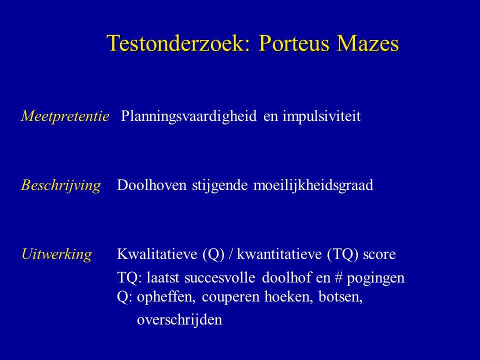 Testonderzoek: Porteus Mazes