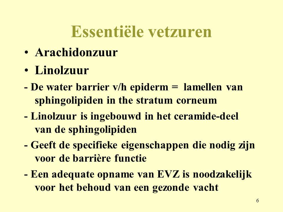 Essentiële vetzuren Arachidonzuur Linolzuur
