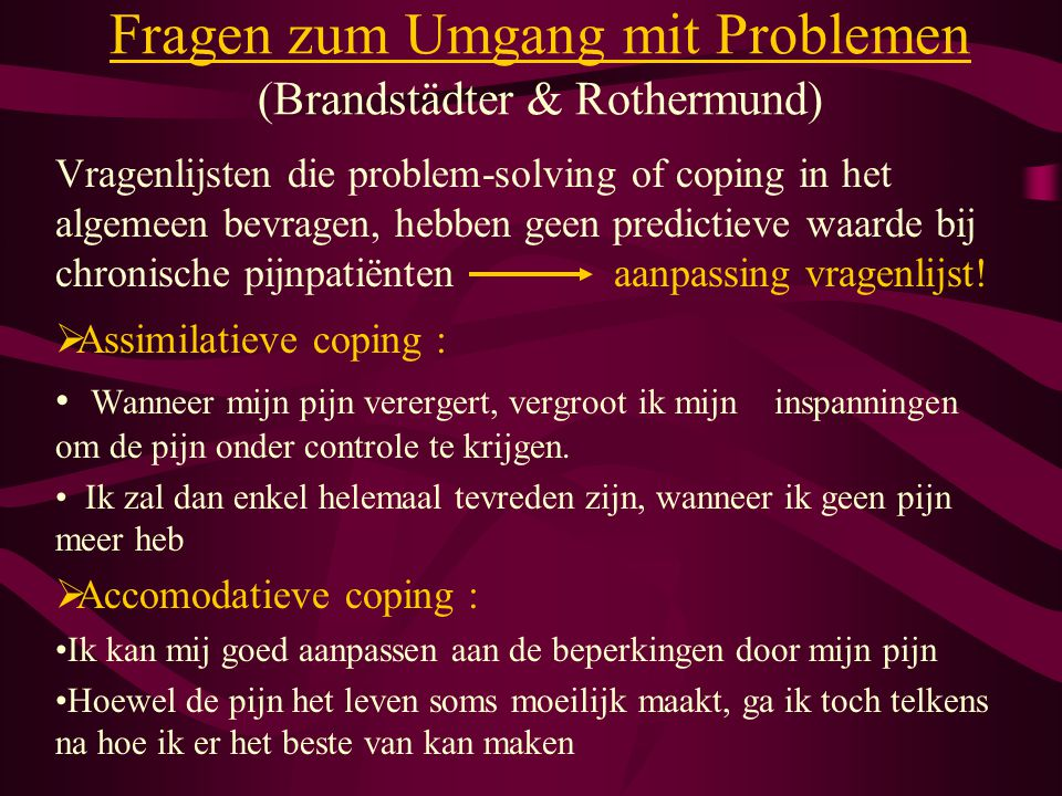 Fragen zum Umgang mit Problemen (Brandstädter & Rothermund)