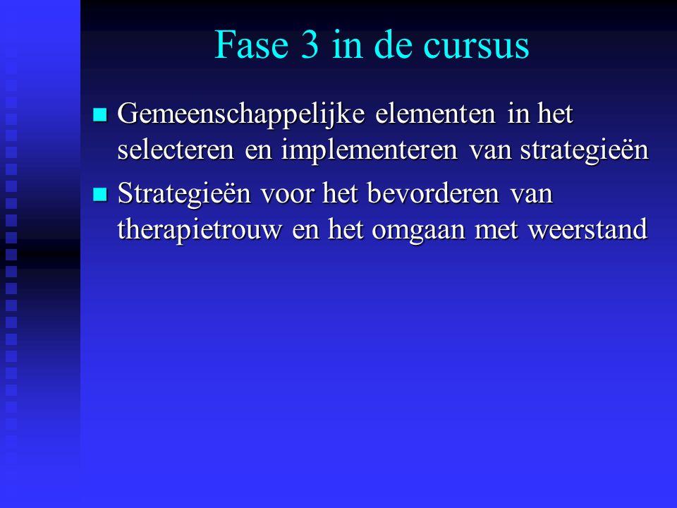 Fase 3 in de cursus Gemeenschappelijke elementen in het selecteren en implementeren van strategieën.