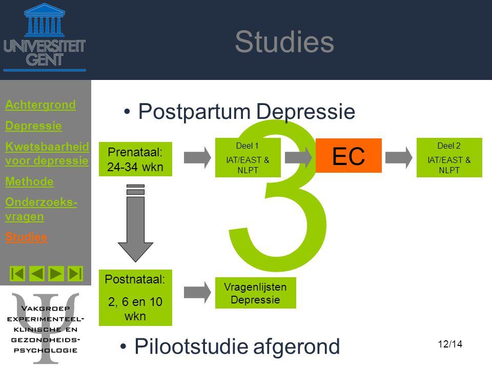 3 Studies EC Postpartum Depressie Pilootstudie afgerond